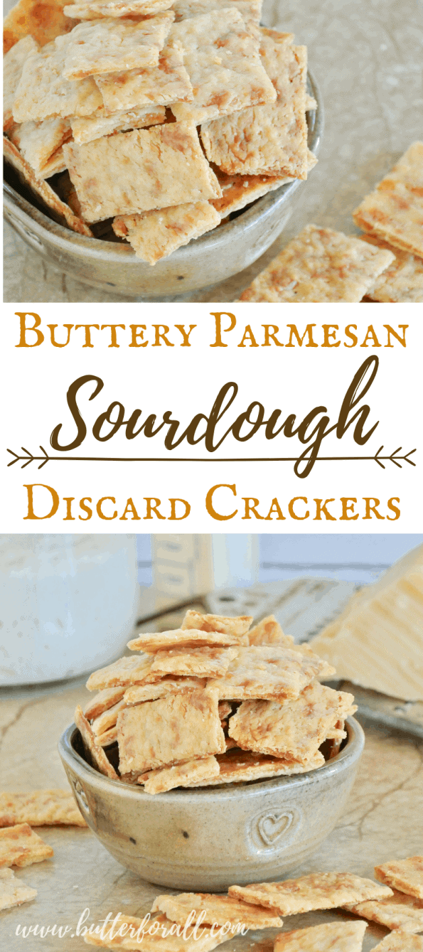 These super cheesy, super crispy sourdough crackers are made with sourdough discard, the fully fermented portion of your starter that is removed before feeding. These are the easiest sourdough crackers with the best digestibility and the most real cheese flavor! #starter #sourdough #wildyeast #fermented #realfood #wisetraditions #crackers #cheesecrackers #healthysnacks #easy #crunchysnacks
