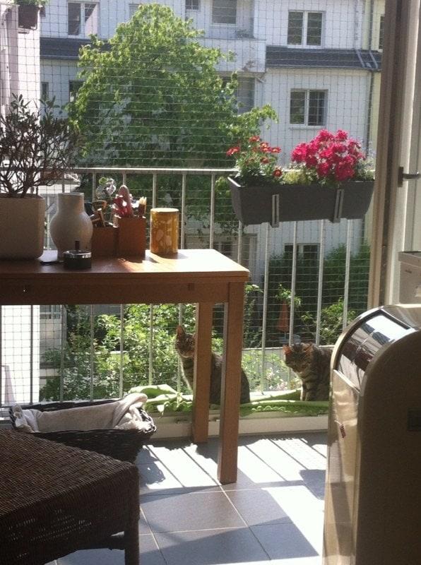Katzennetz für bodentiefe Fenster