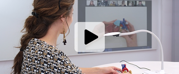 visualiseur travail à distance télétravail