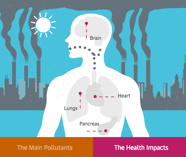 the guardian pollution interactive