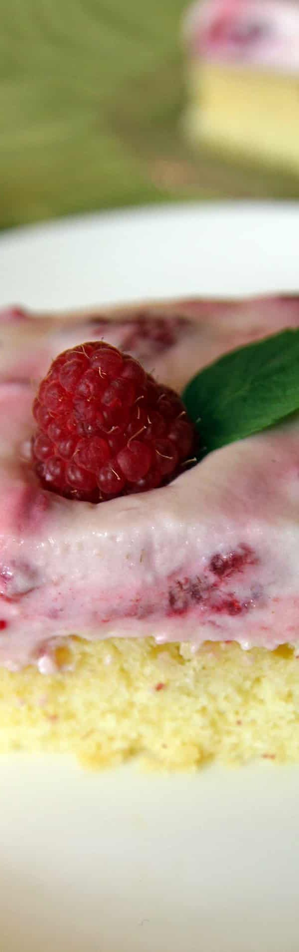 Cake Bar with Raspberry Icing