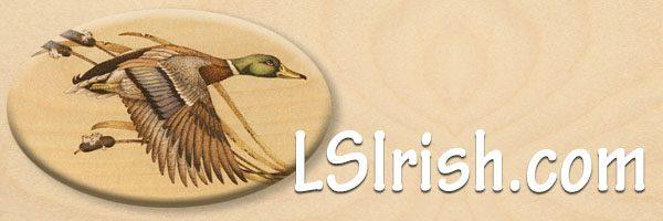 LSIrish.com