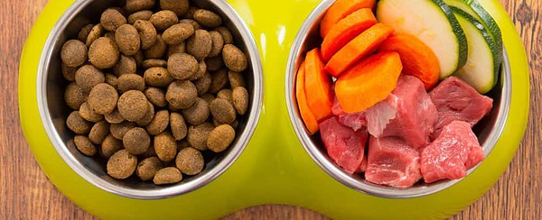 Commercial Raw Food Diet for Cats