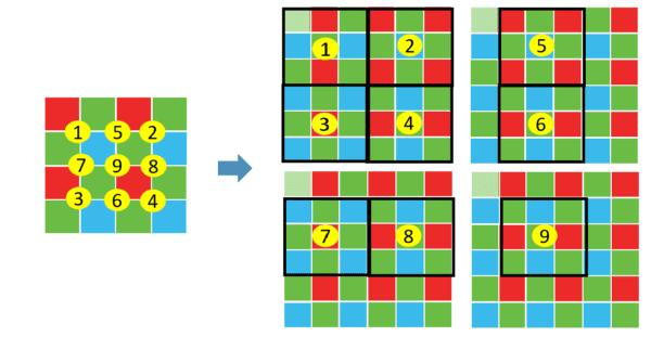 bayer matrice
