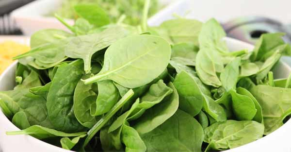 Natural Chlorophyll