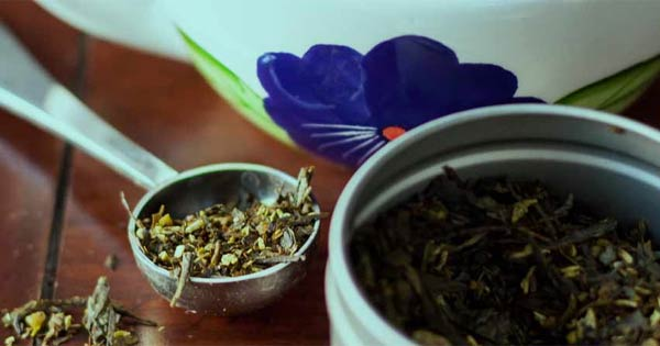 Can green tea help you lose weight