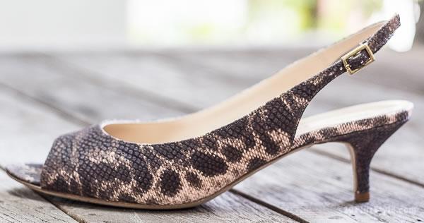 kittenheelsshoes