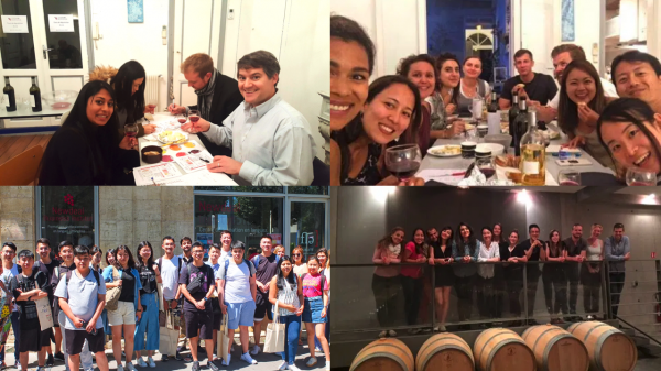 Groups of student in our french cultural activities program wine tasting