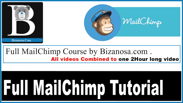 mailchimp tutorial video course for marketers