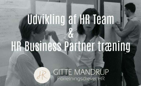 Læs mere om Udvikling af HR Teamet