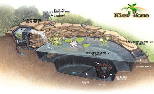схема циркуляции воды в пруде