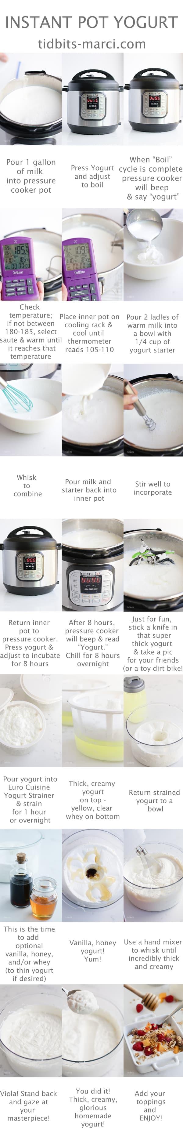 instant pot yogurt step by step collage