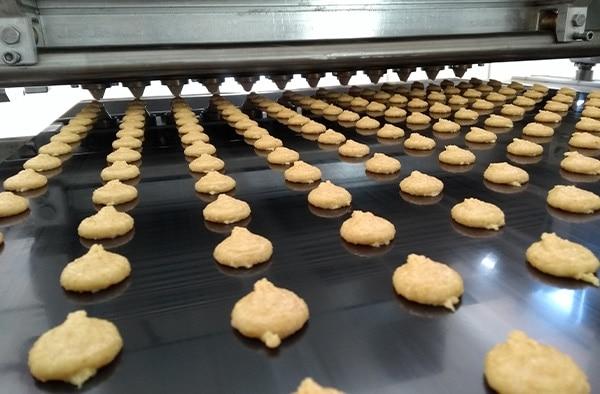 Glutenex hala produkcyjna