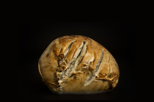 Mozzarella di bufala affumicata zizzona di mondragone