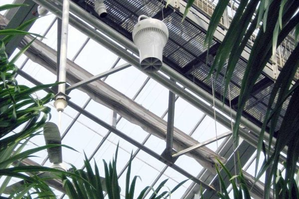 Airius-Cooling-&-Destratification-Fans-In-Horticulture-5