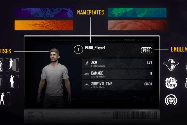 Pubg-console-update