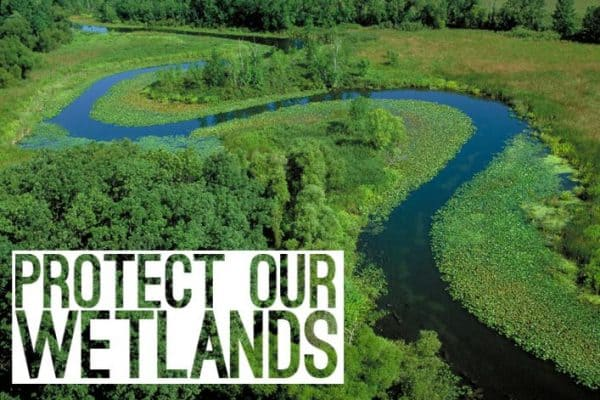 Protect Our Indiana Wetlands