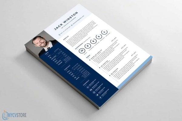 Printable Clean Resume