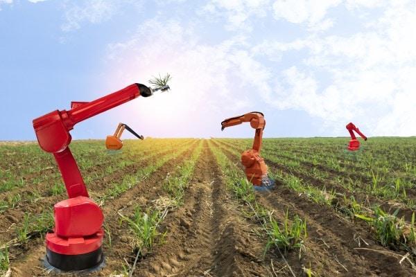 Robotic Farming