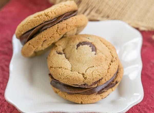 KAF Chocolate Chip Cookies | Chewy and delish!