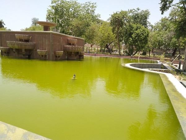 Foutain in Subhash garden