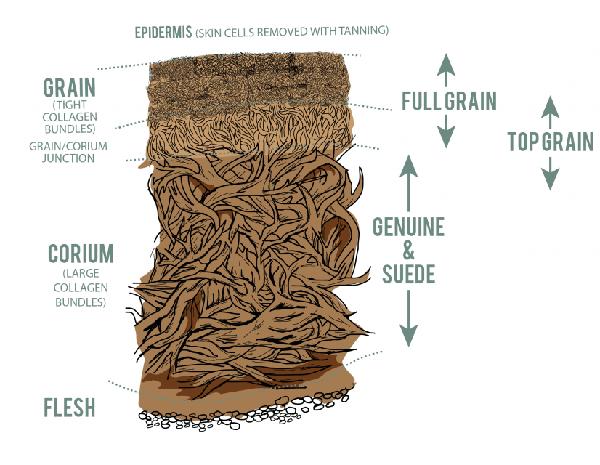 skóra naturalna producent Warszawa