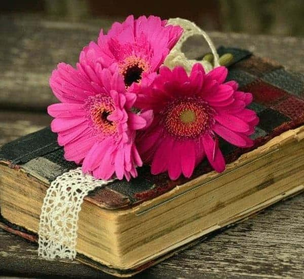 an image of a worn bible with a pink flower on top with text reading Truly Convicted: A 1 Corinthians Devotional