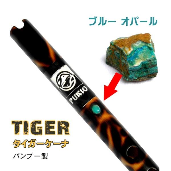 タイガーケーナ