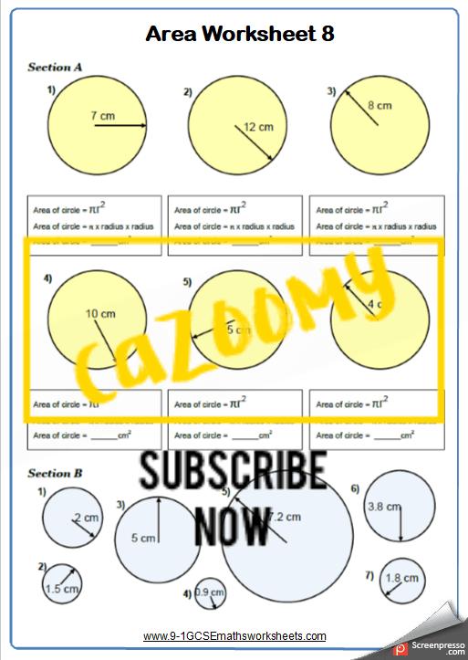 Area of Circles Worksheet 1