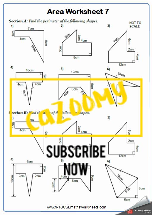 Area Worksheet 7