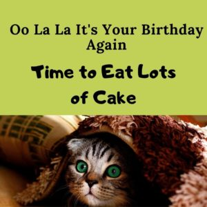 time to eat lots of cake birthday meme