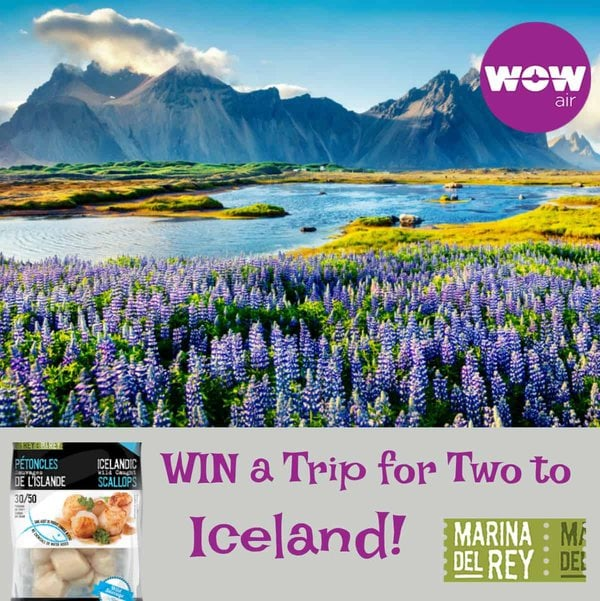 Trip Giveaway to Iceland