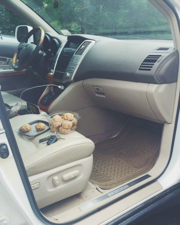 Healthy Road Trip Snack Cookies