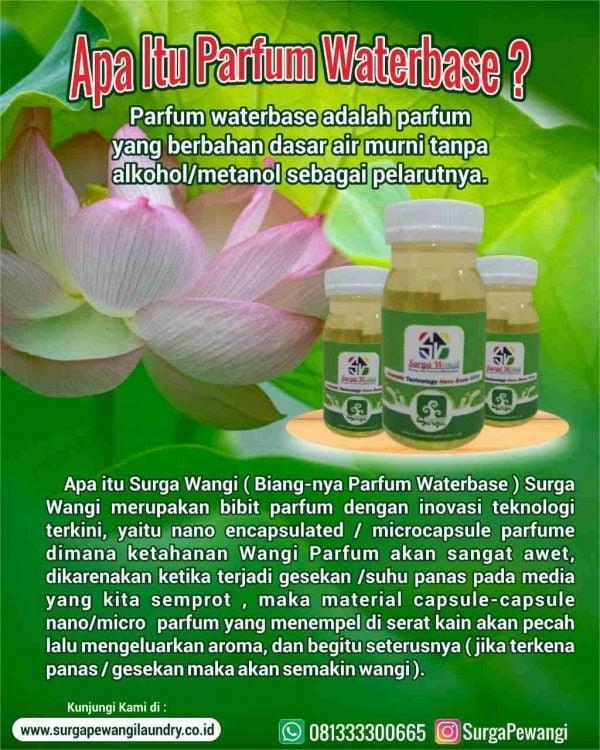 Surga Wangi (Biang-nya Parfum Waterbase)