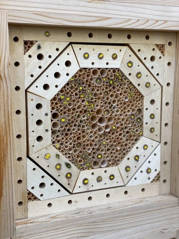 Wildbienennisthilfe mit Markierung der verschlossenen Niströhren