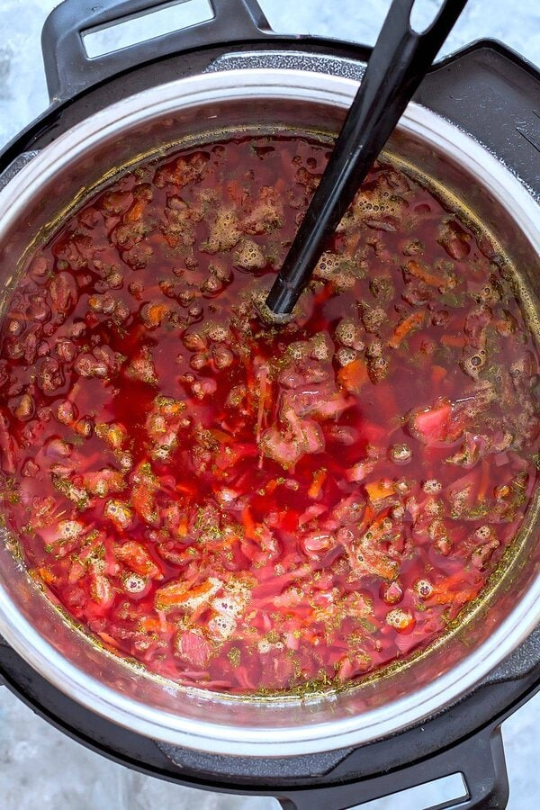 Instant Pot Borscht with Ladle