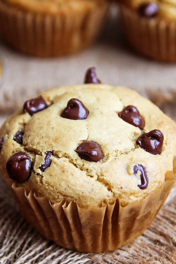 Gluten free peanut butter muffin with chocolate chips