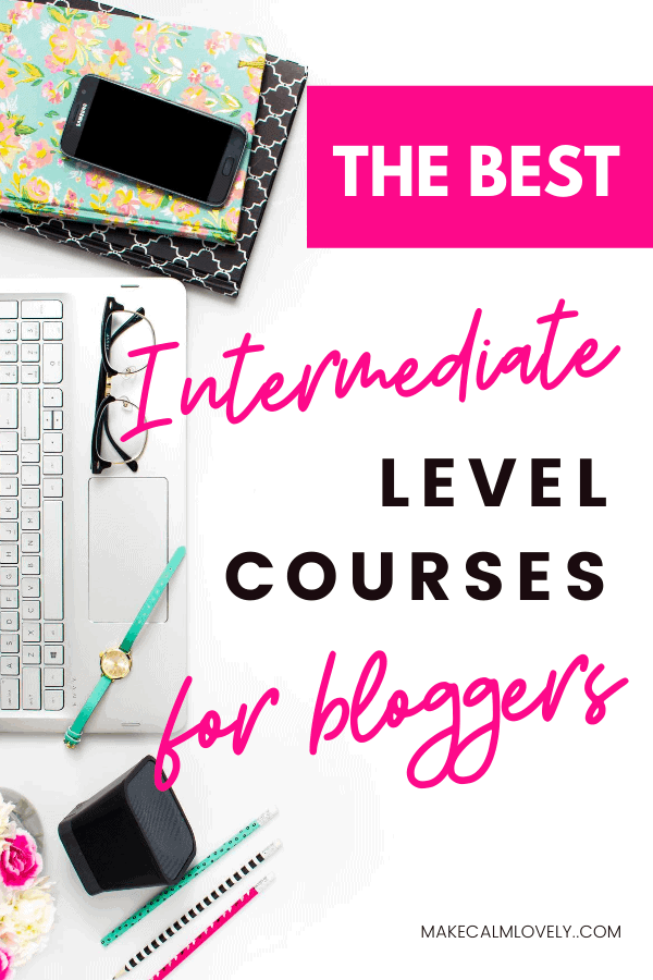 Best Intermediate level courses for bloggers