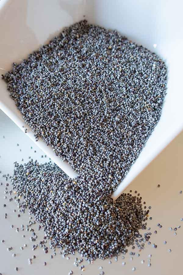 gluten free poppy seed loaf