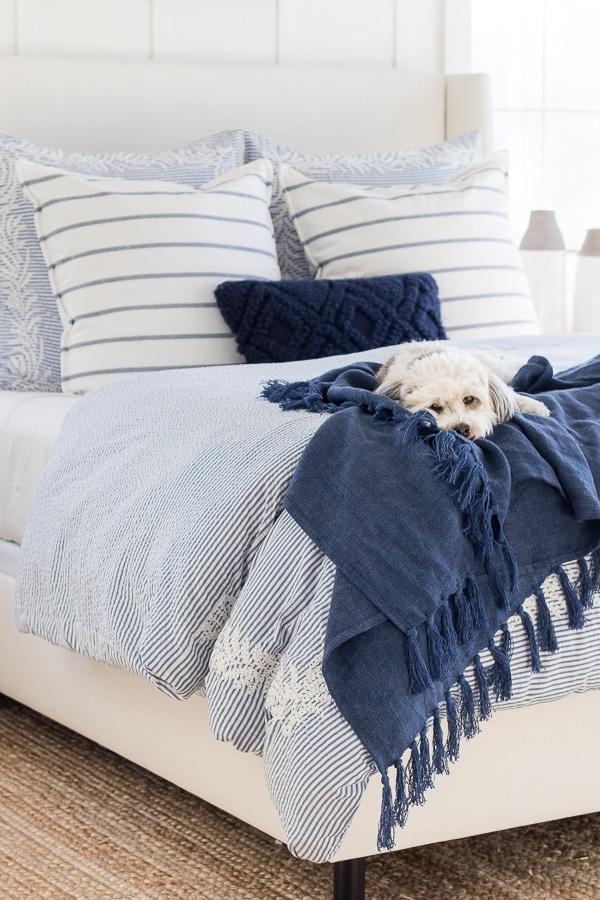 white dog blue bedding