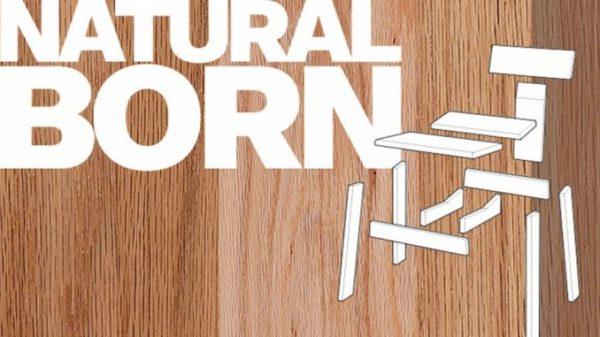 Wystawa-Natural-Born