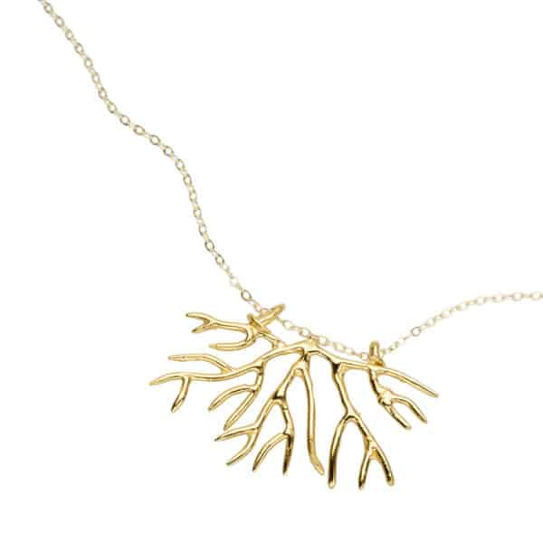 bryozoan necklace - gold, close up