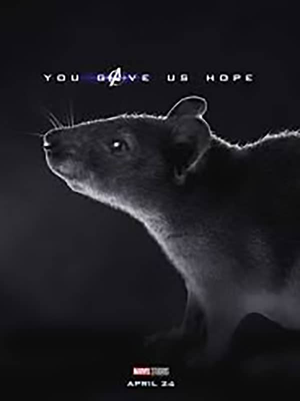 avengers endgame you gave us hope rat funnyjunk