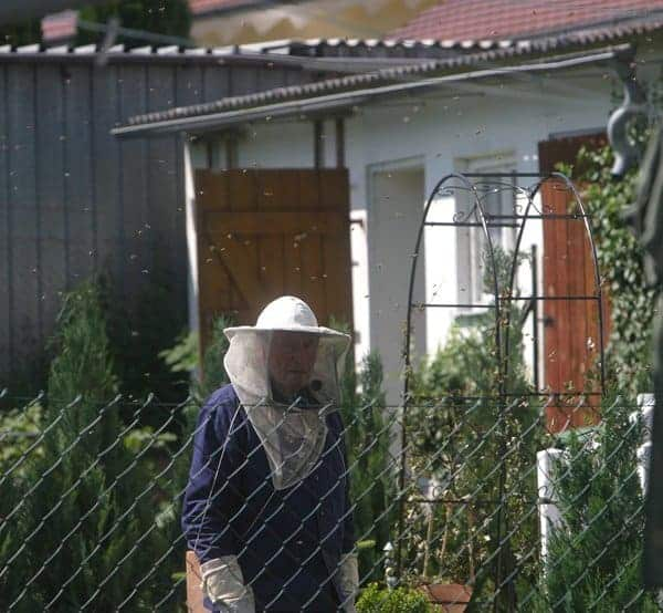 person dressed in beekeeper veil near a beehive