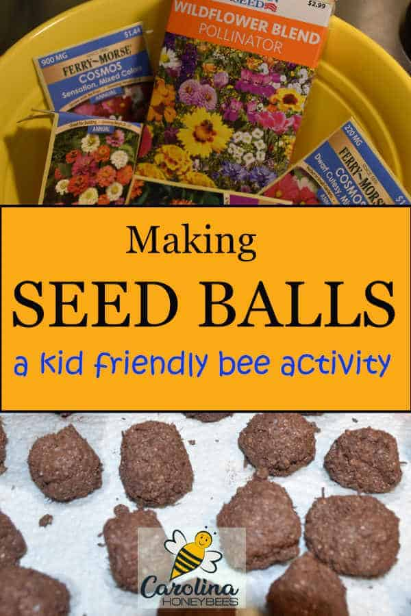 flower seed and finished seed balls - making seed balls - a kid friendly bee activity