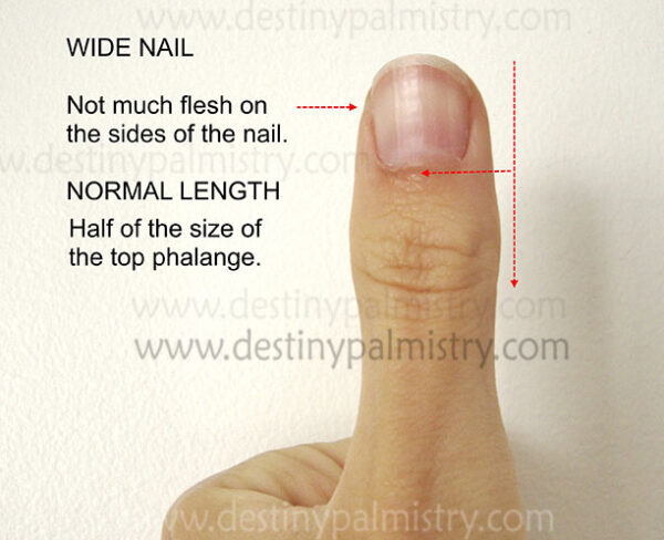 wide fingernail