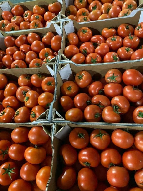 Home Groceries Tomatoes