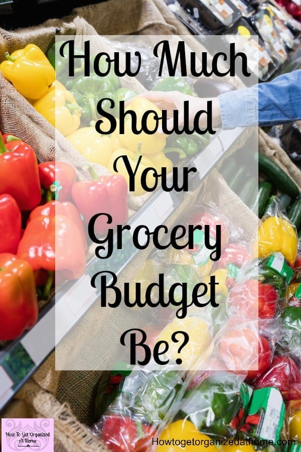 Looking for tips to stop spending too much money on groceries? These ideas will help you work out a grocery budget and manage your money better!