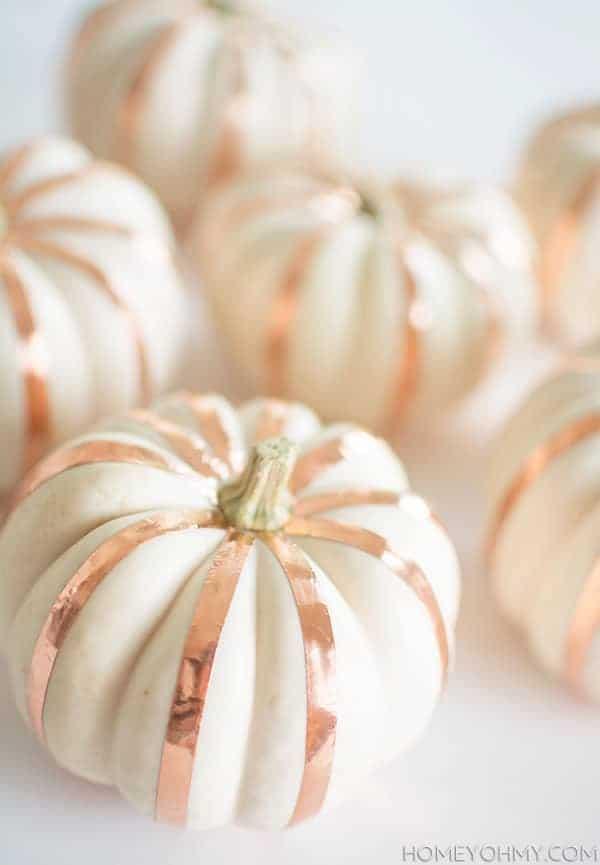 Copper stripe pumpkins