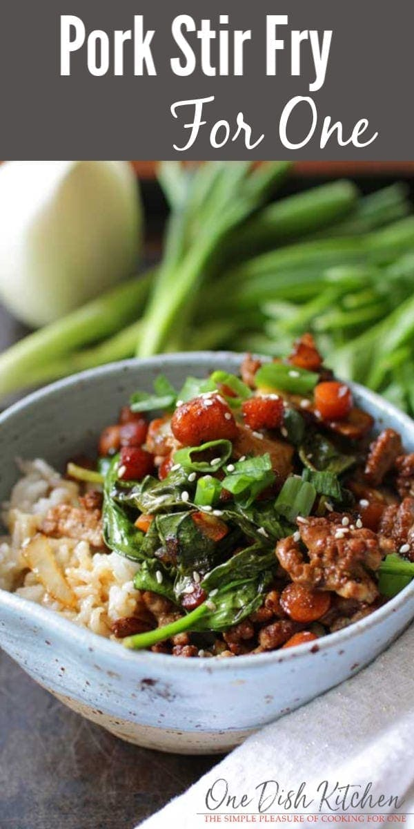Easy Pork Stir Fry Recipe For One | One Dish Kitchen